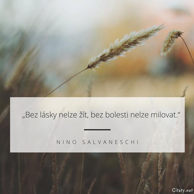 Bez lásky nelze žít, bez bolesti nelze milovat. - Nino Salvaneschi